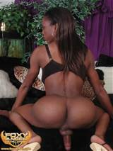 Ebony Pornstars Online Today The Best Hung And Horny Black Shemale Xxx